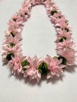 Chrysanthemum ライトピンク